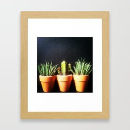 Mini Plants Pots Framed Art Print