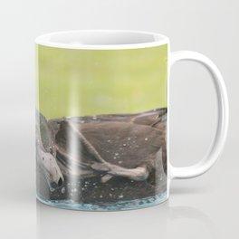 Scrub-a-Dub Coffee Mug