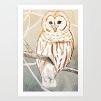 Winter White Owl Art Print
