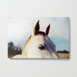 All Ears Metal Print