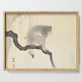 Monkey on tree branch, Ohara Koson Serving Tray