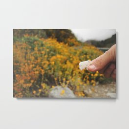 Animal Cracker vs. Nature Metal Print