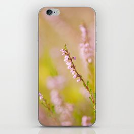 Soft focus of pink heather macro iPhone Skin