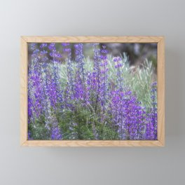 Color in the High Desert Framed Mini Art Print