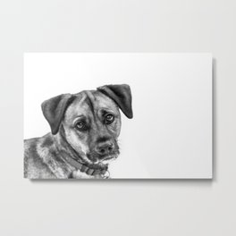 Puppy Dog Eyes Metal Print