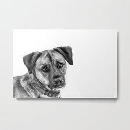 Puppy Dog Eyes Metal Print