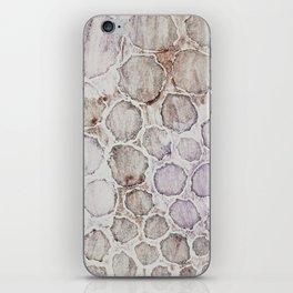 Muddy River iPhone Skin