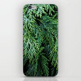 Pacific Redcedar iPhone Skin