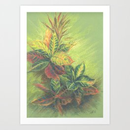 Colorful Leaves on colored paper Art Print