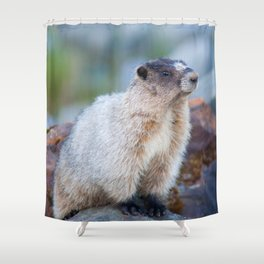 The Marmot Shower Curtain