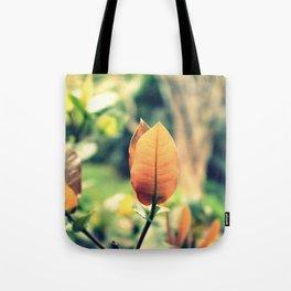 Solo Leaf Tote Bag