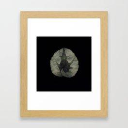 Herbarium 2 Framed Art Print