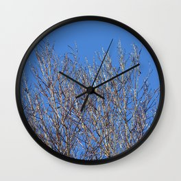 icy branches in sunlight Wall Clock