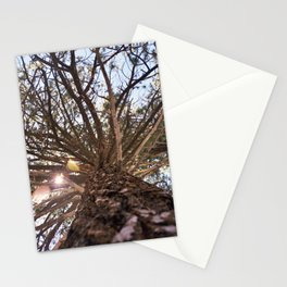 Never Stop Looking Up (Tree 1) Stationery Cards