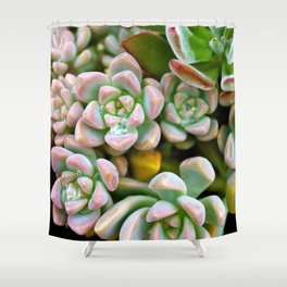 Dewy Delights Shower Curtain