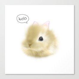 Hello Baby Bunny Canvas Print