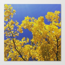 POP-Foliage Canvas Print