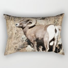 A bighorn sheep in Colorado National Monument Rectangular Pillow