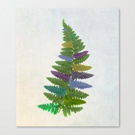Kaleidofern Canvas Print