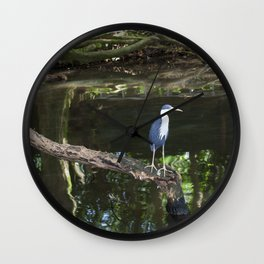 Pied Heron Wall Clock