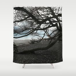 The Floodplain of the Danube at Veroce, Hungary Shower Curtain