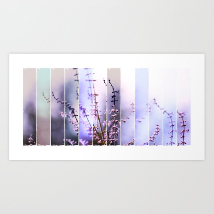 FLOWER - TWELVE Art Print