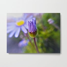 Macro Flower 21 Metal Print
