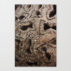 ceramic Canvas Print