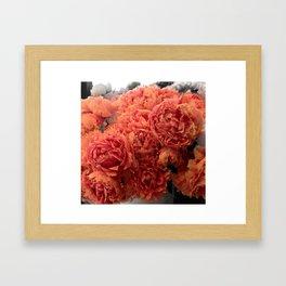 Buckets O' Peonies  Framed Art Print
