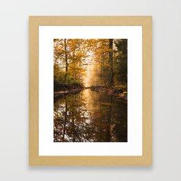 Forest 4 Framed Art Print