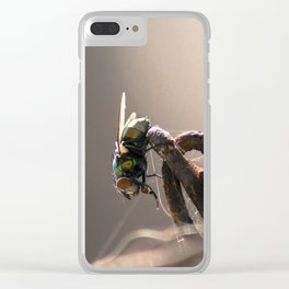 Chains and Fly Clear iPhone Case