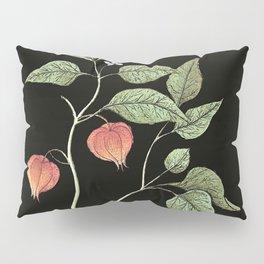 Physalis - lantern flower Pillow Sham