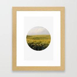 Oblò: Wheat field Framed Art Print