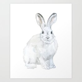 Arctic Rabbit Watercolor Art Print