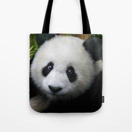 Giant Panda Cub Tote Bag
