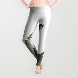 Traveler palm Leggings