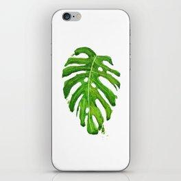 Monstera leaf iPhone Skin