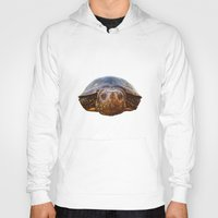 turtle Hoodies featuring Turtle by Anna Milousheva