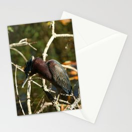 Don't Bother Me Stationery Cards
