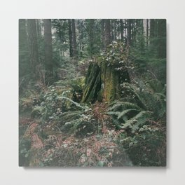 Throne Of The Forest  Metal Print