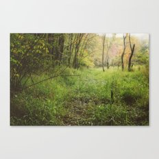 Red Maple Woods (Instax - Instant Film) Canvas Print