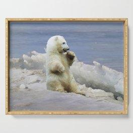 Cute Polar Bear Cub & Arctic Ice Serving Tray