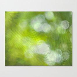 Light Fan Canvas Print