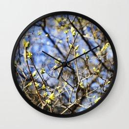 Nature Series: Spring Wall Clock