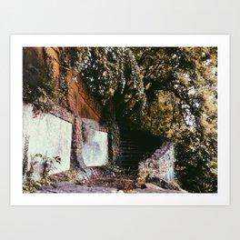 Forgotten Stairs Art Print