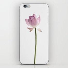 Flower, Lotus, Plant, Pink, Fashion, Scandinavian, Minimal, Wall art iPhone Skin