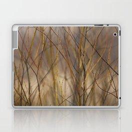 Canadian Prairies 10 Laptop & iPad Skin