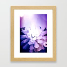 Dahlia, Felt As A Cold Flame Framed Art Print