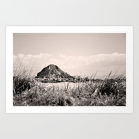 monkey island Art Prints featuring Monkey Island, Southland, New Zealand by the penny drops