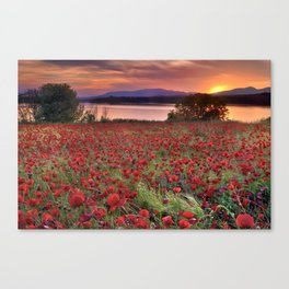 """""""Sea of poppies"""". Sunset at the lake Canvas Print"""